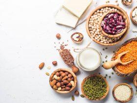 vegan protein kaynakları