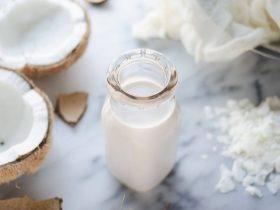 hindistan cevizi sütü faydaları