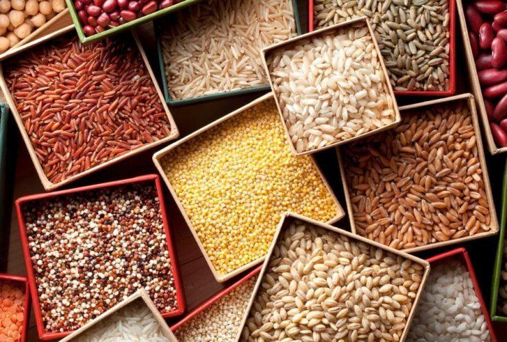 protein içeren tohumlar